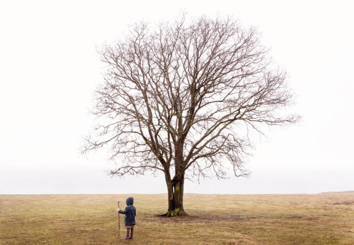 "Title: The Wanderer by the Tree from the series ""The Wanderer"" Artist: Nygårds Karin Bengtsson"