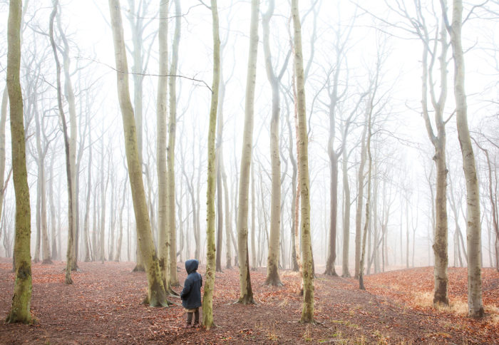 "Title: The Wanderer in the Forest from the series ""The Wanderer"" Artist: Nygårds Karin Bengtsson"